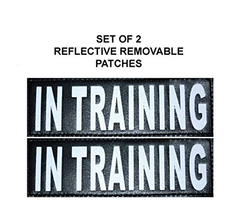 Doggie Vest - Doggie Stylz 2 Reflective in Training Patches for Service Dog Harnesses & Vests.