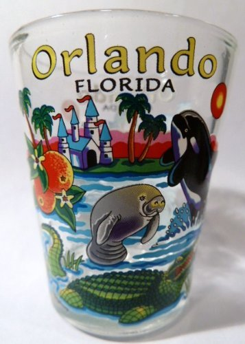 (Orlando Florida Icons Shot Glass)
