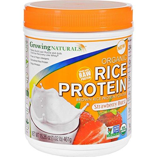 Growing Naturals Prtn Rice Strwbry Org For Sale