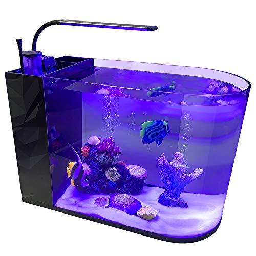 GankPike 12-Gallon Saltwater Aquarium Marine Fish Tank Reef Tank with Pump, Protein Skimmer, Heater and Thermometer (Best Marine Fish For Nano Tank)