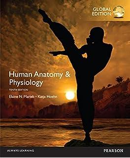 Human Anatomy Physiology Global Edition