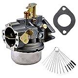 kohler k241 carburetor - Dosens Carburetor for Kohler K241 K301 Cast Iron 10 HP 12 HP Engine Carb & Carbon Dirt Jet Cleaner Tool Kit