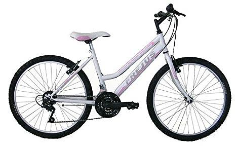 Bicicletta Frejus 24 Prezzo