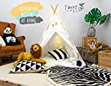 TazzToys Kids Teepee Tent for Kids with Fairy