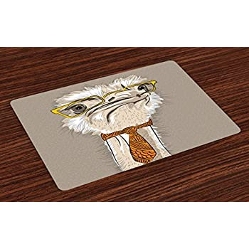Amazon.com: Ambesonne Indie Place Mats Set of 4, Sketch