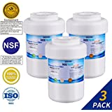 Golden Icepure MWF Refrigerator Water Filter Replacement for GE MWF SmartWater, MWFP, MWFA, Kenmore 469991 (3-Pack)