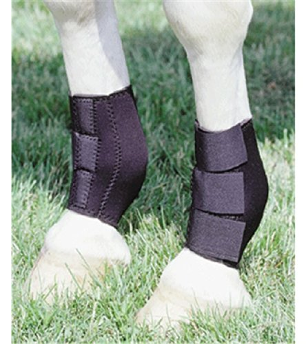 Neoprene Ankle Boots HIND LEGS Boots Leg Protection Care Horse Barrel Racing Reining ()