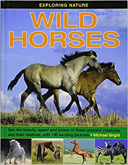 Exploring Nature: Wild Horses: See the beauty, speed and power of