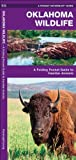 Oklahoma Wildlife, James Kavanagh, 1583556745