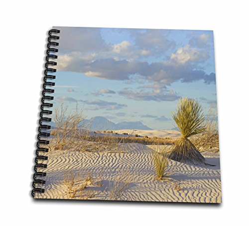 3Drose Landscape Of The White Sands National Monument  New Mexico Drawing Book  12 X 12