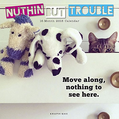 Top Graphique 2018 Nuthin But Trouble Wall Calendar