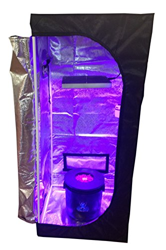 Hydroponic Grow Room – Complete Grow System with Grow Tent – DWC Hydroponic Kit Review