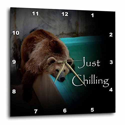 3dRose dpp_53659_1 Grizzly Bear by Pool Wall Clock, 10 by 10-Inch