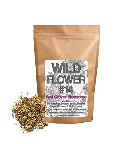 Herbs Red Clover - 7