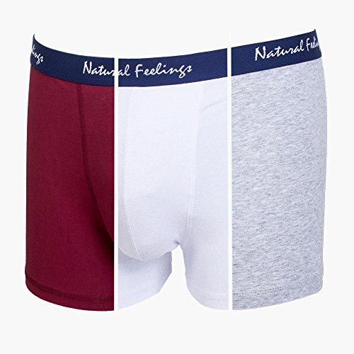 Natural Feelings Unterwäsche Herren Boxer Boxershorts Unterhose ,3er Pack,Einfarbig Hipster