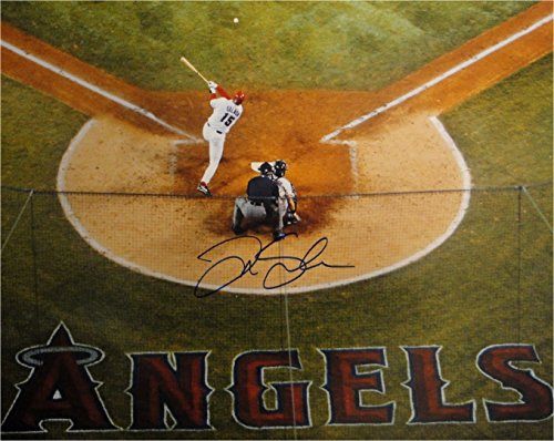 Tim Salmon Hand Signed Autographed 16x20 Photo Anaheim Angels At Home Big Swing