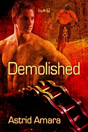 book cover of Demolished