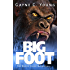 Bigfoot: The Boggy Creek Narratives