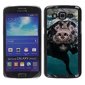 TopCaseStore / la caja del caucho duro de la cubierta de protección de la piel - Black Labrador Retriever Muzzle Dog - Samsung Galaxy Grand 2 SM-G7102 SM-G7105