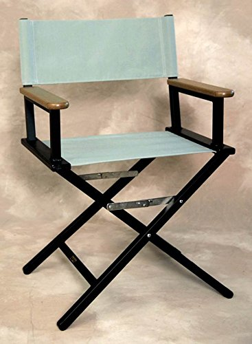 Folding Director's Chair w Fade-Resistant Fabric Seat in Spa