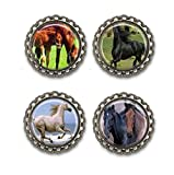 Horses Bottle Cap Magnets