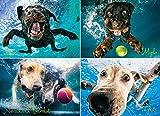 Underwater Dogs: Splash 1000 Piece Puzzle Jigsaw Puzzle 27 x 19in