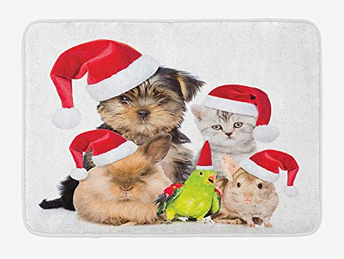 Weeosazg Christmas Bath Mat, Xmas Crew Cat Dog Bird Mouse and Rabbit Bunny with Santa Hats Grumpy Pets Picture, Plush Bathroom Decor Mat with Non Slip Backing, 31.5 X 19.7 Inches, Multi