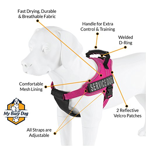 Service Dog Vest Harness - Military Grade Assistance Dog Harness with Removable Reflective Patches - Comfortable & Safe - Handle for Maximum Training, Walking Control (Free ADA Card Download)