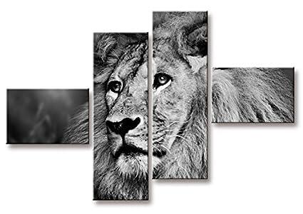 Quadro moderno 4 pezzi 66x96cm multipannello lion: amazon.it: casa e