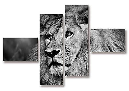 Quadro modern on canvas pieces cm lion amazon