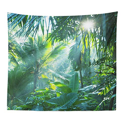Redvive TopMisty Forest Tapestry Wall Hanging Nature Landscape Tapestry Sunshine Through Tree Tapestries for Bedroom Living Room