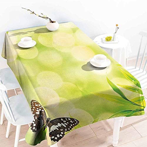 Onefzc Fashions Rectangular Table Cloth,Plant Ladybug and a Butterfly Standing on a Bamboo Leaves Bokeh Background,Table Cover for Kitchen Dinning Tabletop Decoratio,W54x72L Light Green Multicolor