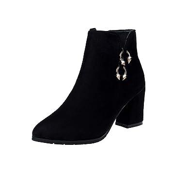 HRCxue Zapatos de la Corte Grueso con Botines de Mujer Puntiagudos de Gamuza tacón Alto Martin Botas Hebilla metálica Botas Desnudas Mujeres: Amazon.es: ...