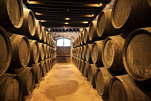 Sherry casks in a winery Gonzalez Byass Jerez De La Frontera Cadiz Province Andalusia Spain Poster Print by Panoramic Images (24 x 18)