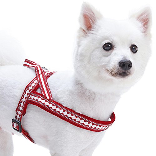 Blueberry Pet 7 Colors Soft & Comfy 3M Reflective Jacquard Padded Dog Harness, Chest Girth 16.5 - 21, Marsala Red, Small, Adjustable Harnesses for Dogs