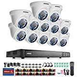 [HD-TVI 1080P] Surveillance Systems, ANNKE 16 Channel CCTV DVR and (12) 1080P Indoor/Outdoor Weatherproof Security Cameras, Motion Detection and Email Alert -No HDD