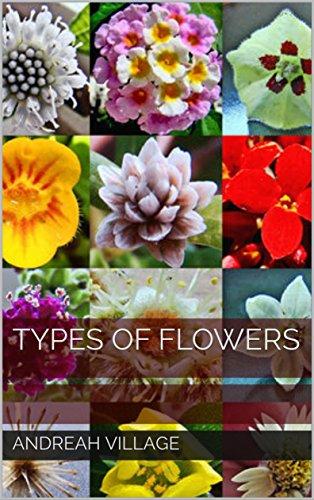 flower types - 3