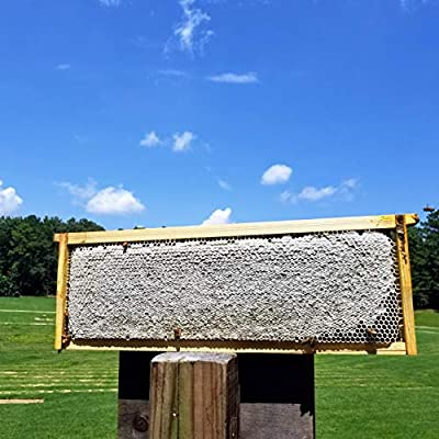 Fischer's Bee Quick for Removing Honey Bees from Honey Boxes in a Safe, Non-Toxic and Organic Way by Fischer's Bee Quick