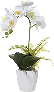 Olrla White Orchid Artificial Flower in Pot, Faux Phaleanopsis Orchid Bonsia for Office Home Wedding Party Indoor Table Decor (White 1)