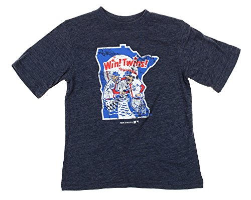 Outerstuff Minnesota Twins MLB Youth Triblend Distressed Graphic Tee T-Shirt, Grey (Grey, Large (10-12))