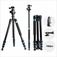 Regetek 63 Professional DSLR Camera Tripod Monopod with 360 Panorama Ball Head for Canon Nikon Sony Olympus DV Gopro with Carry Bag/Phone Adaptor/Gopro Mount