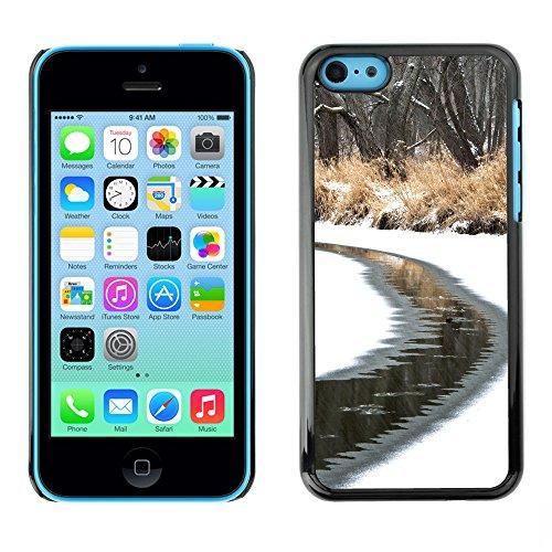 Premio Sottile Slim Cassa Custodia Case Cover Shell // F00025453 flux givré // Apple iPhone 5C