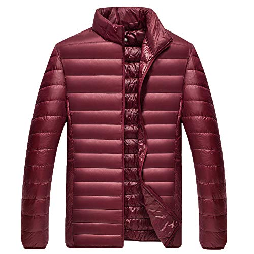 YKARITIANNA Men Solid Quilted Coats, Roomy Autumn Winter Warm Fashion Slim Fit Stand Collor Cotton Down Jacket Coat
