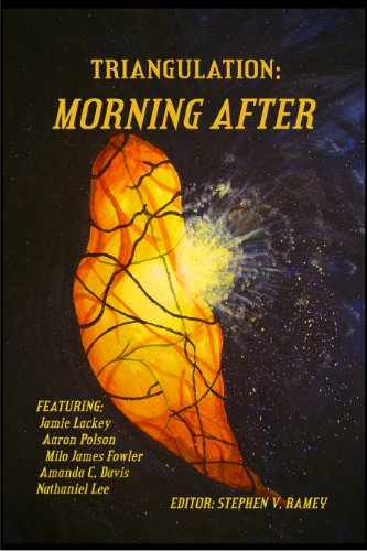 Triangulation: Morning After (Triangulation Anthologies Book 6)