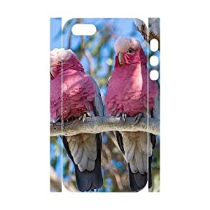 AKERCY Kissing Parrots Bird Phone 3D Case For iPhone 5,5S [Pattern-4]