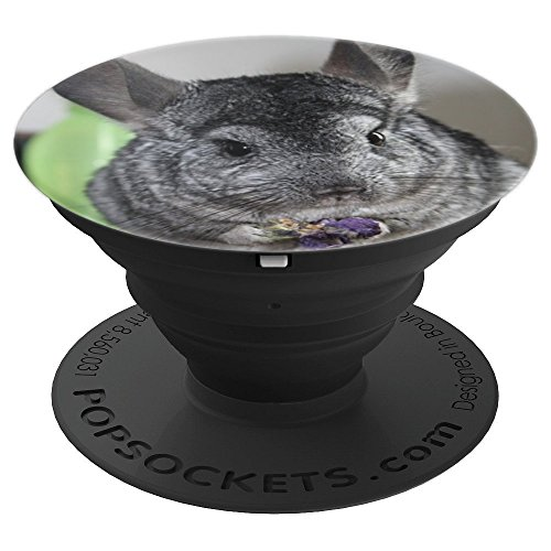 Cute Chinchilla Photography - PopSockets Grip and Stand for Phones and Tablets