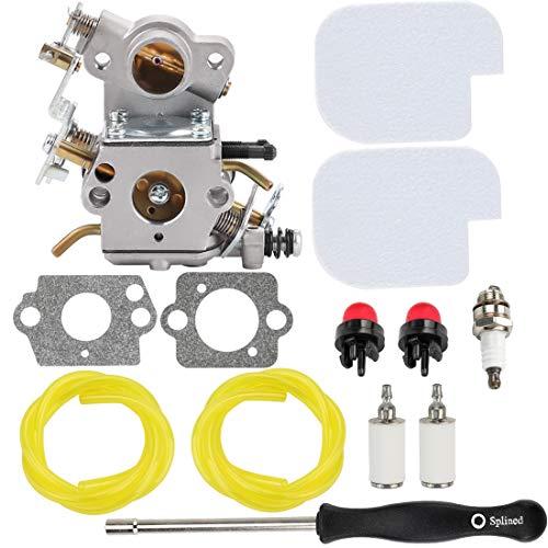 Hipa C1M-W26C 545070601 Carburetor