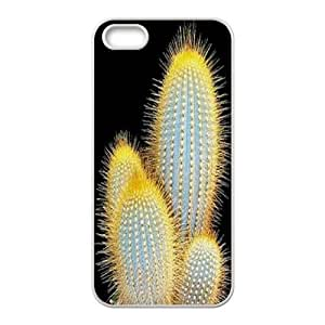 Cactus CUSTOM Cover Case For Ipod Touch 4 Cover LMc-76814 at LaiMc
