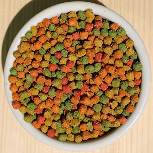 Speciale per Tartarughe in Crescita 1,5 kg NATURAVIVA BASSANO Tarta PRO-Energy alimento vegetale energetico per Tartarughe terrestri Senza proteine Animali
