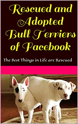 Rescued and Adopted Bull Terriers of Facebook: The Best Things in Life are ()